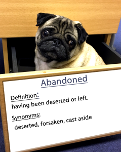 pug-word-of-the-day 12.fw