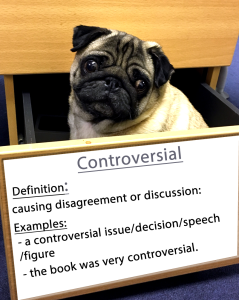 pug-word-of-the-day  13.fw
