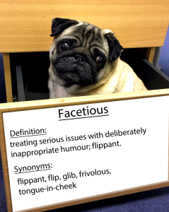pug-word-of-the-day 30.fw