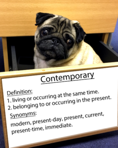 pug-word-of-the-day 38.fw